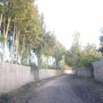باغچه کردان لشکرآباد
