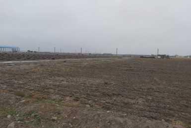 زمین کشاورزی در کرج