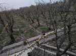 خرید زمین 5000 متری در بهترین منطقه کردان