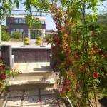 خرید باغ ویلا لاکچری در طاووسیه کردان